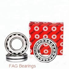 45 mm x 85 mm x 23 mm  FAG NJ2209-E-TVP2 + HJ2209-E cylindrical roller bearings