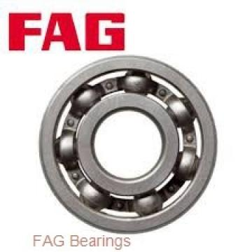 FAG 713667590 wheel bearings