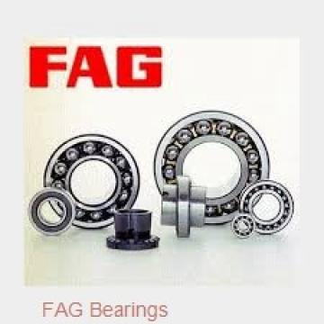 FAG 713619280 wheel bearings